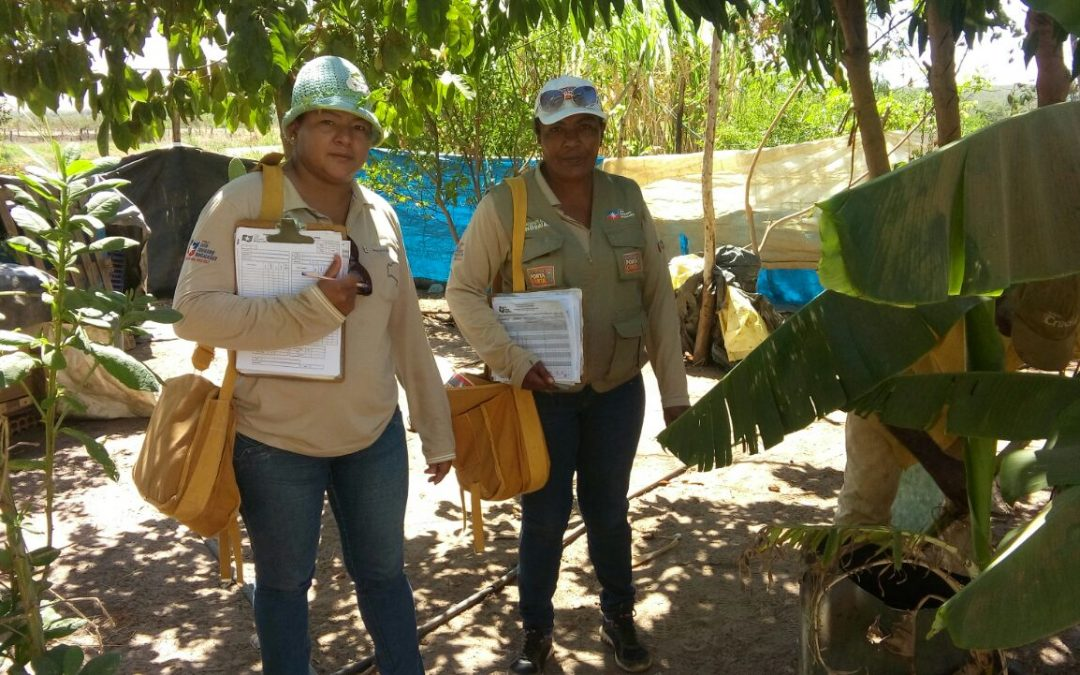 LEM: Secretaria de Saúde intensifica combate à dengue
