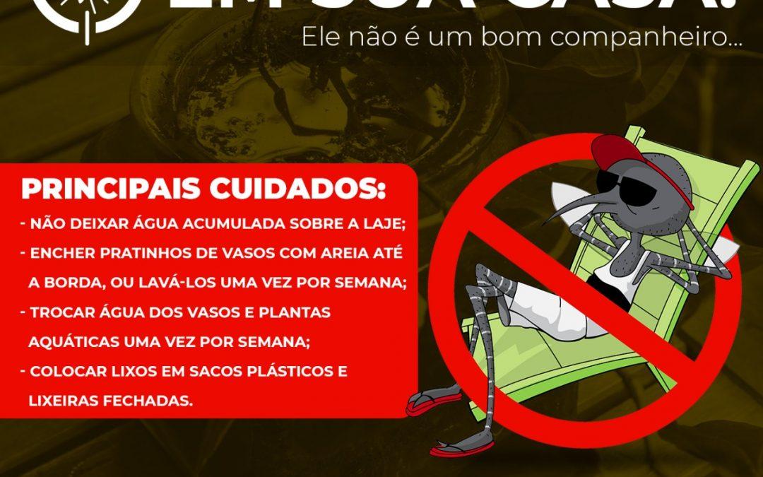 LEM: Nota oficial sobre a dengue