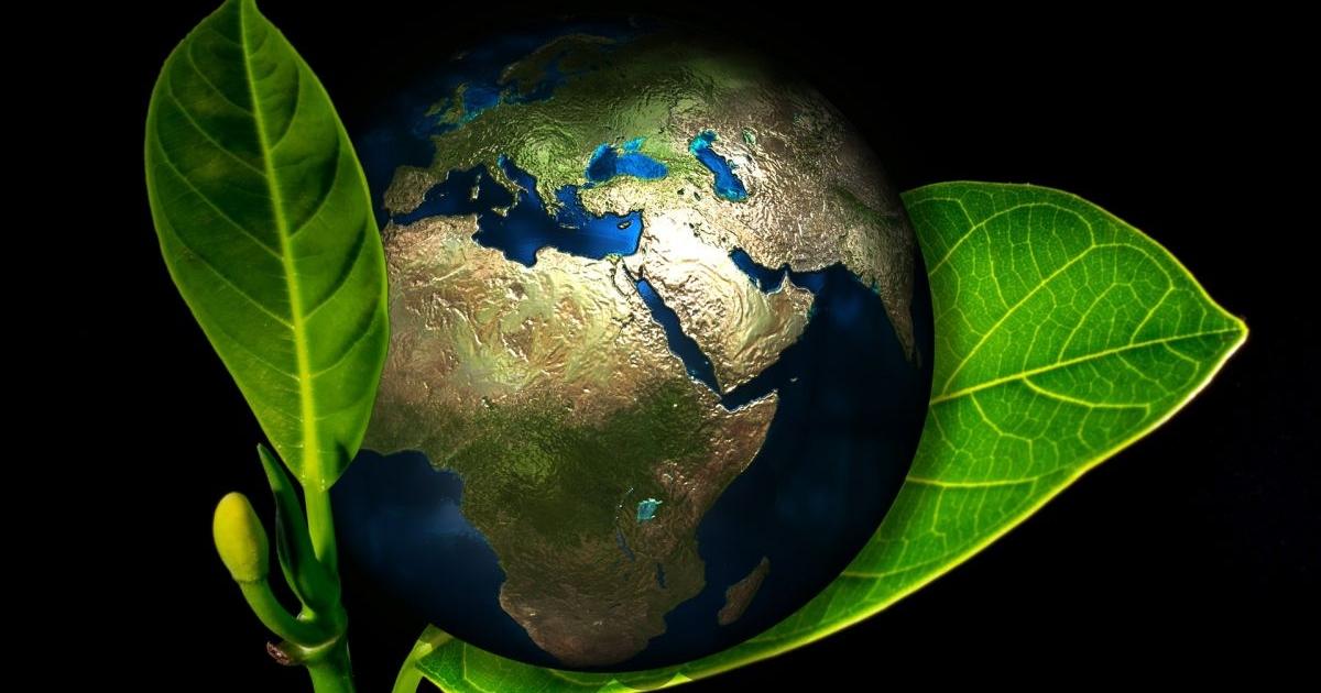 Brasil: Dia Mundial do Meio Ambiente