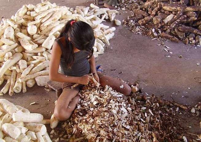 Curiosidades: Dia Mundial de Combate ao Trabalho Infantil