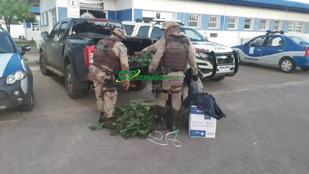 LEM: Engenheiro agrônomo e seu irmão são presos com plantação de maconha em bairro nobre da Cidade.